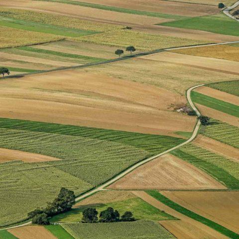 Выдел земельного участка
