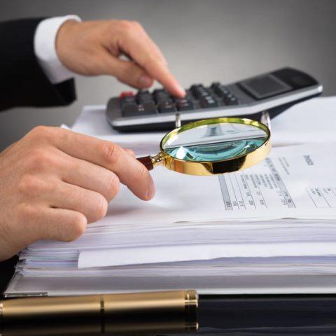 Налоговая проверка